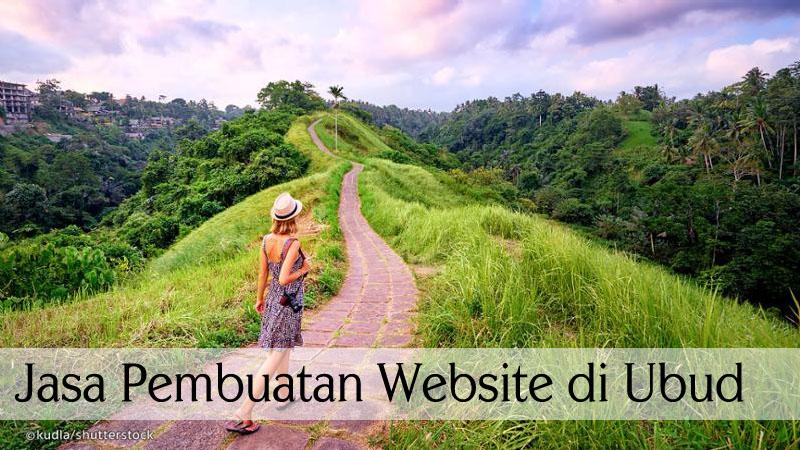 jasa pembuatan website di ubud, website murah website murah dan profesional di ubud, jenis dan klasifikasi website